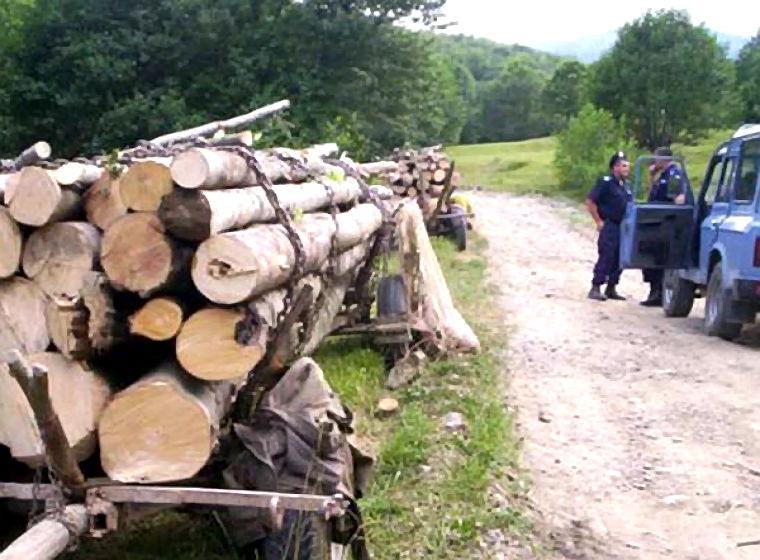 furt-de-lemn-Prahova