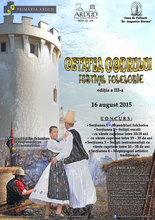 Afis-Festivalul-Folcloric-Ardud-2015