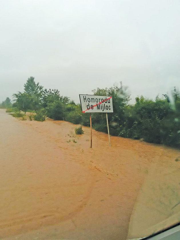 ploaie-(2)