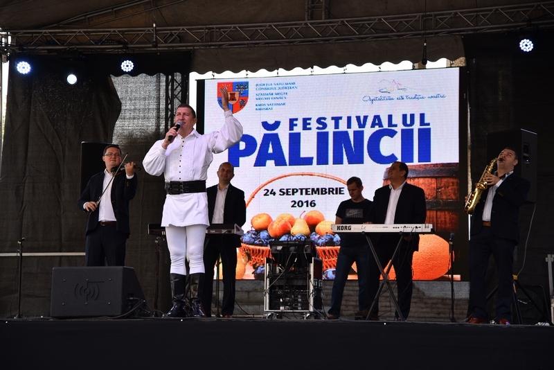 palinca4