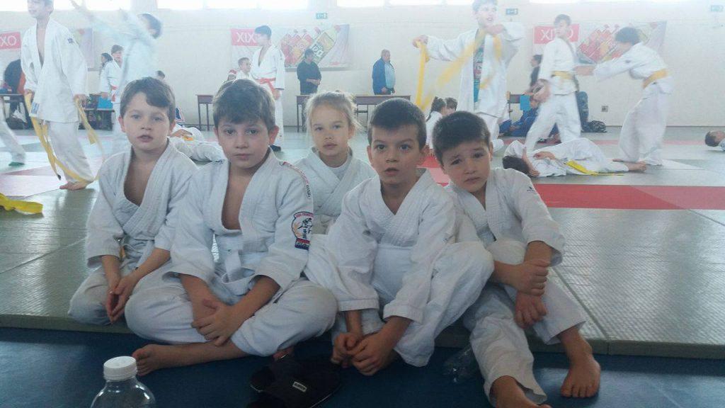 judo-csm