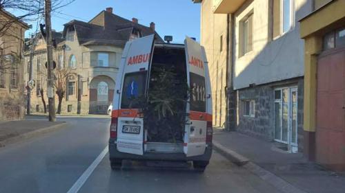 video-brad-transportat-de-urgenta-cu-ambulanta-18560306