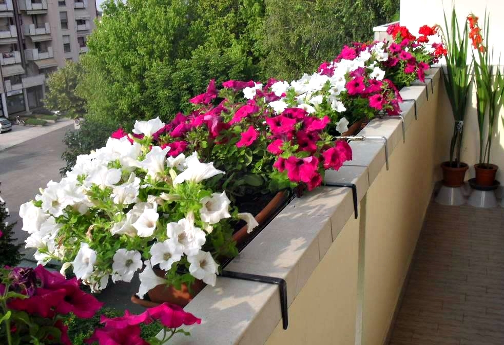 balcon (2)