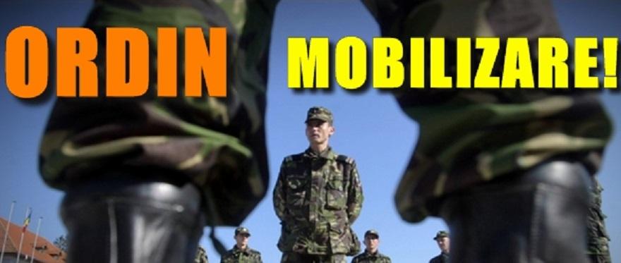 mobilizare
